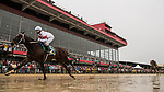 BALTIMORE, MD - MAY 19:  Mitole #5 with Ricardo Santana Jr. wins the Chick Lang Stakes at Pimlico Racecourse on May 19, 2018 in Baltimore, Maryland. (Photo by Alex Evers/Eclipse Sportswire/Getty Images)