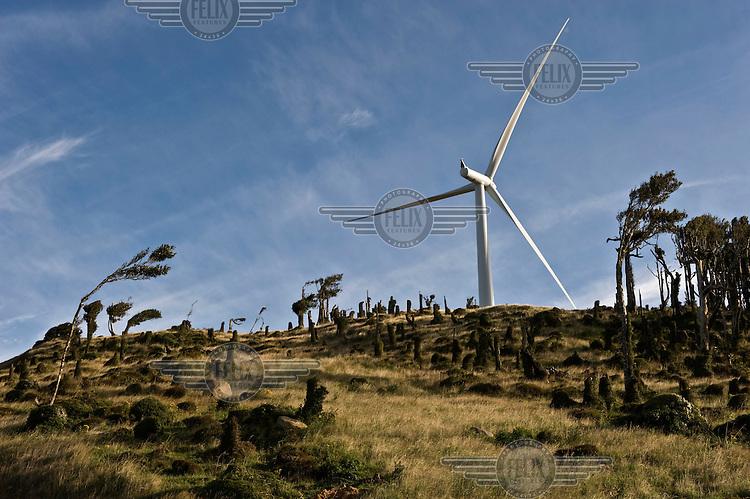 A wind turbine, part of the newly commissioned Te Uku Wind Farm near Raglan on the West coast of the North Island.