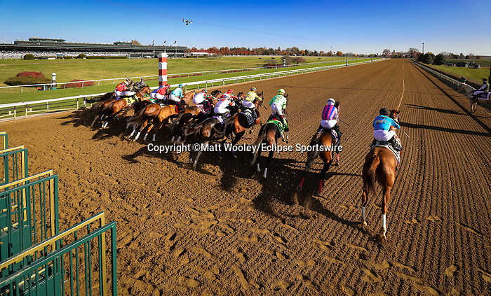 Whitmore (#7, Pleasantly Perfect), Irad Ortizz up, wins the BC Sprint at Keeneland 11.07.20. Winning Owner: LaPenta, Robert V., Moquett, Ron and Head of Plains Partners LLC, Winning Trainer: Ron Moquett=