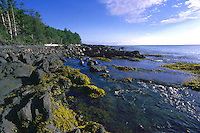 Haida Gwaii (Queen Charlotte Islands), Northern BC, British Columbia, Canada - Coastline at Low Tide, near Skidegate on Graham Island