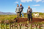 Some traditions just don't go away - 'Cutting your own turf' with the 'Slean' pictured here in Inchimacteigue just outside of Cahersiveen l-r; Danny Curran, Kieran McCarthy & Johnny Curran.