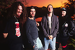 Various portrait sessions and live photographs of the rock band, Pantera