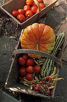 Europe/France/Limousin/19/Corrèze/Meyssac: Manoir de Bellerade - Panier de légumes : citrouille, courge, haricot et tomates