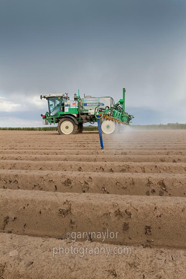 Spraying pre emergence residual herbicide onto potatoes - Lincolnshire, April