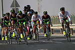 Greenedge Cycling Team in action during the 2nd Stage of the 2012 Tour of Qatar a team time trial at Lusail Circuit, Doha, Qatar, 6th February 2012 (Photo Eoin Clarke/Newsfile)