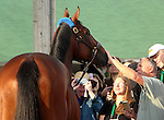 May 03, 2015 American Pharoah greeted fans and media the day after winning the 141st Kentucky Derby at Churchill Downs in Louisville, Kentucky.   ©Mary M. Meek/ESW/CSM