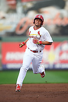 Springfield Cardinals outfielder Breyvic Valera (15) running the bases on a Bruce Caldwell (not shown) home run during a game against the Frisco RoughRiders  on June 3, 2015 at Hammons Field in Springfield, Missouri.  Springfield defeated Frisco 7-2.  (Mike Janes/Four Seam Images)