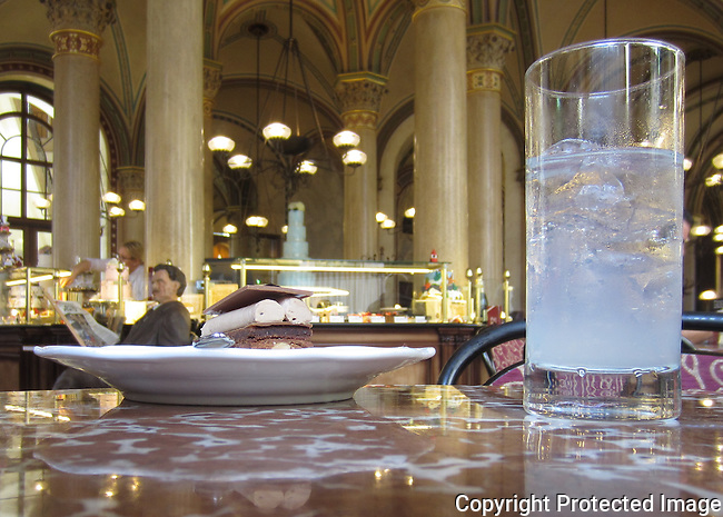 Café Central was opened in 1876, and in the late 19th century it became a key meeting place of the Viennese intellectual scene. Key regulars included: Peter Altenberg, Theodor Herzl, Alfred Adler, Egon Friedell, Hugo von Hofmannsthal, Anton Kuh, Adolf Loos, Leo Perutz, Alfred Polgar and Leon Trotsky. In January 1913 alone, Josip Broz Tito, Sigmund Freud, Adolf Hitler, Vladimir Lenin, and Leon Trotsky (the latter two being regulars) were patrons of the establishment.