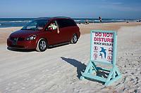 Signs inform beachgoers not to disturb the area wildlife on Daytona Beach,Florida. (do)