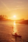 Sea kayakers, Clayoquot Sound, Vancouver Island coast, British Columbia, Canada, Tofino area,.