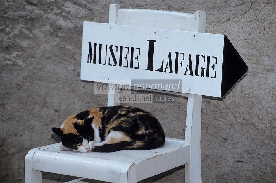 Europe/France/Midi-Pyrénées/81/Tarn/L'Isle-sur-Tarn: Le musée Lafage - Chat à la sieste sur chaise