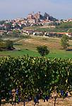 Italien, Piemont, Region Monferrato: Weinberge und Weinort Cereseto   Italy, Piedmont, Region Monferrato: Cereseto