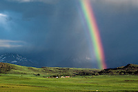 Rainbow and storm over ranch country, Eastern Montana, June. Nimbostratus cloud