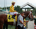 LOUISVILLE, KY -JUNE 04: Union Jackson (Curlin x Hot Dixie Chick, by Dixie Union) and jockey Ricardo Santana Jr. in the post parade of the G3 Aristides Stakes at Churchill Downs, Louisville, KY. He would finish 3rd. Owner Stonestreet Stables LLC, trainer Steven M. Asmussen.  (Photo by Mary M. Meek/Eclipse Sportswire/Getty Images)