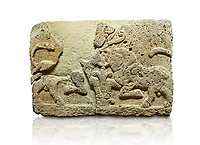 Picture & image of Hittite relief sculpted orthostat stone panel of Herald's Wall Limestone, Karkamıs, (Kargamıs), Carchemish (Karkemish), 900-700 B.C. Anatolian Civilisations Museum, Ankara, Turkey.<br /> <br /> A pair of kneeling bull on either side of the tree of life, one each foot is on the tree, the other feet are bend towards the abdomen.  <br /> <br /> Against a white background.