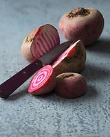 Betterave Tonda di Chioggia bio // Organic  Tonda di Chioggia beet