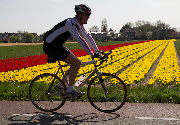 Netherlands, Keukenhof Gardens.  Backlighting.<br /> Backlit photos like this, where I'm shooting into the sun, are more difficult to successfully accomplish. Here, the cyclist is a silhouette and shows little color. Generally, try photographing with the sun behind you.