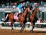 October 13, 2015:  Siding Spring in the Dixiana Bourbon Stakes at Keeneland on 10/04/15.   Candice Chavez/ESW/CSM