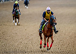 April 28, 2021: O Besos exercises in preparation for the Kentucky Derby at Churchill Downs at Churchill Downs at Churchill Downs on April 29, 2021 in Louisville, Kentucky. John Voorhees/Eclipse Sportswire/CSM