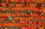 Pictured: Workers lay out brightly coloured squares of recently dyed cloth to dry in the hot sun.    Each day the villagers dye at least a thousand pieces and over the course of a year they colour more than three million. <br /> <br /> The cloth covers around 10,000 square foot while drying and lies in the heat for up to four hours.   The images were captured by photographer Azim Khan Ronnie, in Batik Village in Narayanganj, Bangladesh.   SEE OUR COPY FOR DETAILS<br /> <br /> Please byline: Azim Khan Ronnie/Solent News<br /> <br /> © Azim Khan Ronnie/Solent News & Photo Agency<br /> UK +44 (0) 2380 458800