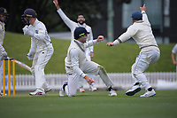 Glenn Phillips appeals for caught behind during day three of the Plunket Shield match between the Wellington Firebirds and Auckland Aces at the Basin Reserve in Wellington, New Zealand on Monday, 16 November 2020. Photo: Dave Lintott / lintottphoto.co.nz