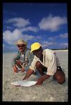 A bonefish on Christmas Island