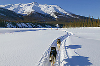 Skijouring in the Brooks Range, Alaska