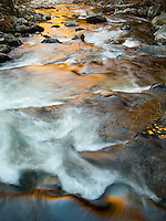 This photo captures the Tremont River in the Smoky Mountains National Park in late fall.  The sun shining on near-by yellow trees reflects a golden glow in the Tremont River, looking down stream.