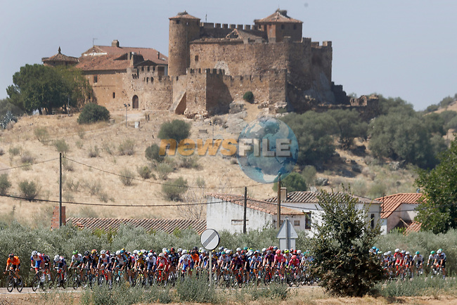 The peloton during Stage 14 of La Vuelta d'Espana 2021, running 165.7km from Don Benito to Pico Villuercas, Spain. 28th August 2021.     <br /> Picture: Luis Angel Gomez/Photogomezsport   Cyclefile<br /> <br /> All photos usage must carry mandatory copyright credit (© Cyclefile   Luis Angel Gomez/Photogomezsport)