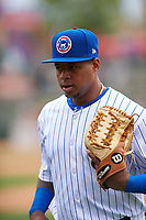 South Bend Cubs left fielder Nelson Velazquez (13) during a Midwest League game against the Cedar Rapids Kernels at Four Winds Field on May 8, 2019 in South Bend, Indiana. South Bend defeated Cedar Rapids 2-1. (Zachary Lucy/Four Seam Images)