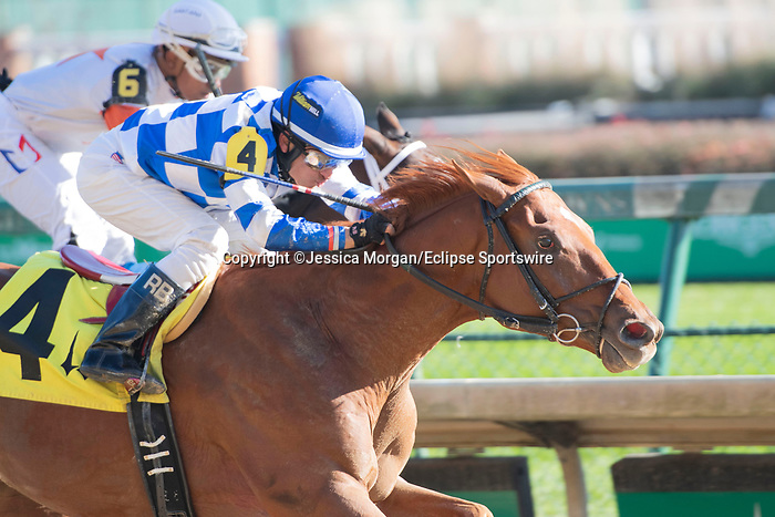 November 28, 2020: Hidden Stash, trained by Victoria Oliver and ridden by Rafael Bejarano, wins Race 3, allowance optional claiming, at Churchill Downs in Louisville, Kentucky on November 28 2020. Jessica Morgan/Eclipse Sportswire.