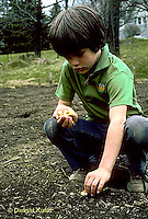 HS16-004z  Onion - boy planting onion bulbs in garden