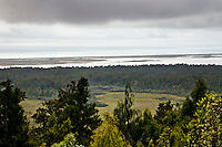 Views toward the Tasman Sea from Pakihi Lookout and Okarito Lagoon - Westland National Park, West Coast, New Zealand
