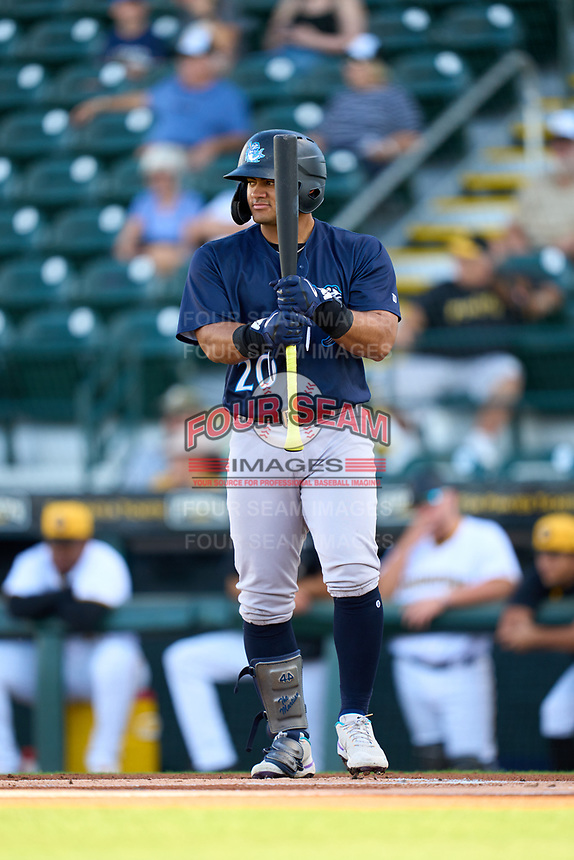 Tampa Tarpons Jasson Dominguez (20) bats during Game Two of the Low-A Southeast Championship Series against the Bradenton Marauders on September 22, 2021 at LECOM Park in Bradenton, Florida.  (Mike Janes/Four Seam Images)