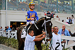 February 21, 2015: Tiznow RJ with Robby Albarado up in the Risen Star Stakes at the New Orleans Fairgrounds Risen Star Stakes Day. Steve Dalmado/ESW/CSM