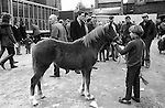 Southall West London weekly Wednesday Charter Fair Horse market Uk 1983<br />
