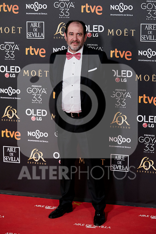 Karra Elejalde attends to 33rd Goya Awards at Fibes - Conference and Exhibition  in Seville, Spain. February 02, 2019. (ALTERPHOTOS/A. Perez Meca)