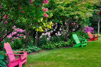Chairs in GardenSchreiner's Iris Gardens, Oregon
