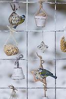 Blaumeise, Futtergitter für Vögel, Vogelfutter-Spalier, Vogelfutter-Gitter, Selbstgemachtes Vogelfutter, Vogelfütterung, Fütterung, Fettfuttermischung, Fettfutter, Meisenknödel, Vogelfutterspalier, Vogelfuttergitter, Winterfütterung, Blau-Meise, Meise, Meisen, Cyanistes caeruleus, Parus caeruleus, blue tit, bird's feeding, La Mésange bleue. Adventskalender für Vögel, Advent, Weihnachten für Vögel