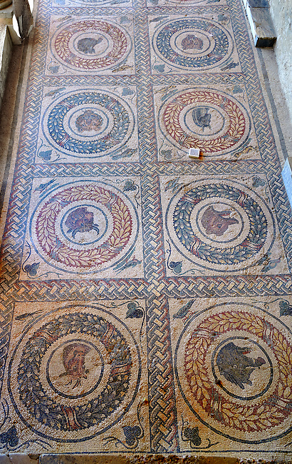 Close up picture of the Roman mosaics of the Peristyle depicting animals in a geometric mosaic wreath inside square panels, room no 13 at the Villa Romana del Casale, first quarter of the 4th century AD. Sicily, Italy. A UNESCO World Heritage Site.<br /> <br /> The peristyle mosaic floor of Villa Romana del Casale is decorated with square mosaic repeating designs which have a rope design geometric mosaic on the outside, inside which is are laurel wreath mosaics which surround Protomas, the representation of the head and neck of an animal often used decoratively in architecture, of wild and domesticated animals. The two sides of the peristyle have been identified as one side for visitors use and the other for the family. The peristyle mosaics lead on both sides around three sides of the peristyle to steps that lead up to the corridor of the Great Hunt Mosaics,