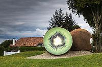 France, Aquitaine, Landes (40) ,  Peyrehorade ,  Rond-Point du Kiwi de l'Adour  //  France, Aquitaine, Landes,  Peyrehorade , Adour kiwi, traffic circle