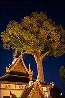 Wat Chedi Luang Buddhist Temple at night, Chiang Mai, Thailand