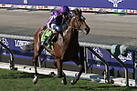 ARCADIA, CA - NOVEMBER 5: Highland Reel #12, ridden by Seamus Heffernan, wins the Longines Breeders' Cup Turf during day two of the 2016 Breeders' Cup World Championships at Santa Anita Park on November 5, 2016 in Arcadia, California. (Photo by Eric Patterson/Eclipse Sportswire/Breeders Cup)