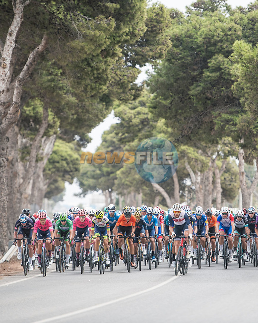 The peloton during Stage 10 of La Vuelta d'Espana 2021, running 189km from Roquetas de Mar to Rincón de la Victoria, Spain. 24th August 2021.     <br /> Picture: Charly Lopez/Unipublic | Cyclefile<br /> <br /> All photos usage must carry mandatory copyright credit (© Cyclefile | Unipublic/Charly Lopez)