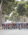 The peloton during Stage 10 of La Vuelta d'Espana 2021, running 189km from Roquetas de Mar to Rincón de la Victoria, Spain. 24th August 2021.     <br /> Picture: Charly Lopez/Unipublic   Cyclefile<br /> <br /> All photos usage must carry mandatory copyright credit (© Cyclefile   Unipublic/Charly Lopez)