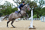 04/09/2015 - Class 2 - Nupafeeds Supplement Senior Discovery - Brook Farm TC