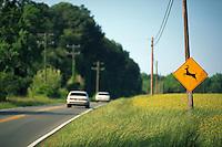 Deer crossing sign by side of country road.