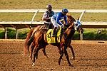 DEL MAR, CA  SEP 6: #4 Pixelate, ridden by Umberto Rispoli, in the post parade of the Del Mar Derby (Grade ll) at Del Mar Thoroughbred Club on September 6, 2020 in Del Mar, CA..(Photo by Casey Phillips/Eclipse Sportswire/CSM.