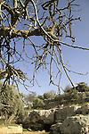 Israel, Jerusalem mountains, Ein Shmuel in Nabi Samuel