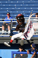 Batavia Muckdogs mascot Homer entertains fans atop the dugout during a game against the State College Spikes on June 22, 2014 at Dwyer Stadium in Batavia, New York.  State College defeated Batavia 10-3.  (Mike Janes/Four Seam Images)